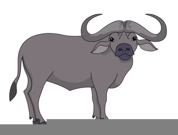 Cape Buffalo Clipart | Free Images at Clker.com - vector ...
