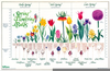 Flower Bulbs Chart Image