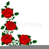 Rote Rosen Clipart Image