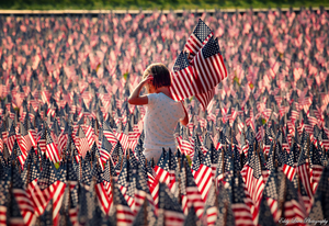 Sea Of Flags By Mylifethroughthelens D Jux Image