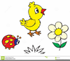 Clipart Pictures Of Ladybirds Image