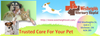Reliable Animal Hospital In Kitchener Image