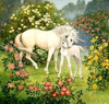 Unicorn With Foal Image