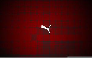 Puma Logo Wallpapers Image