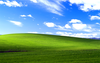 Windows Xp Bliss Wide Image