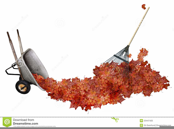 Free Clipart Rake Leaves Free Images At Clker Com Vector Clip