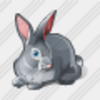 Icon Rabbit Image