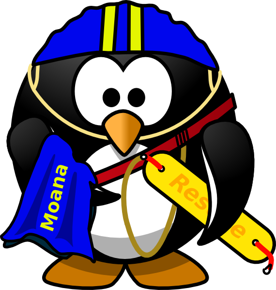 Penguin Lifeguard Clip Art at Clker.com - vector clip art ...