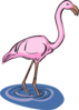 Flamingo Standing In Water Clip Art