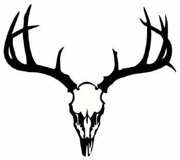 090802 230320 218009 moreover European Deer Skull Mount Decals Stickers Tattoo in addition  as well Legendary Whitetails Wallpaper together with Whitetail Deer Antlers Clipart 26030. on deer mount clip art