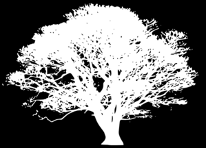 White Tree Silhouette On Black Clip Art