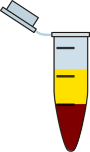 Eppendorf Tube With Serum Clip Art