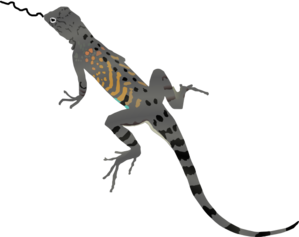 Lizardtongue Clip Art