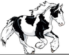 Stallions Clipart Image