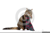 Cat Wearing A Backpack Clipart Image