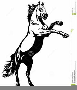 mustang wild horse clipart free images at clker com vector clip rh clker com mustang horse head clipart mustang horse clip art free