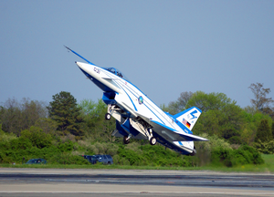 The X-31 Vector (vectoring, Extremely Short Takeoff And Landing, Control And Tailless Operation Research) Approaches The Ground At A 24 Degree Angle. Image