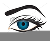Eye Side View Clipart Image
