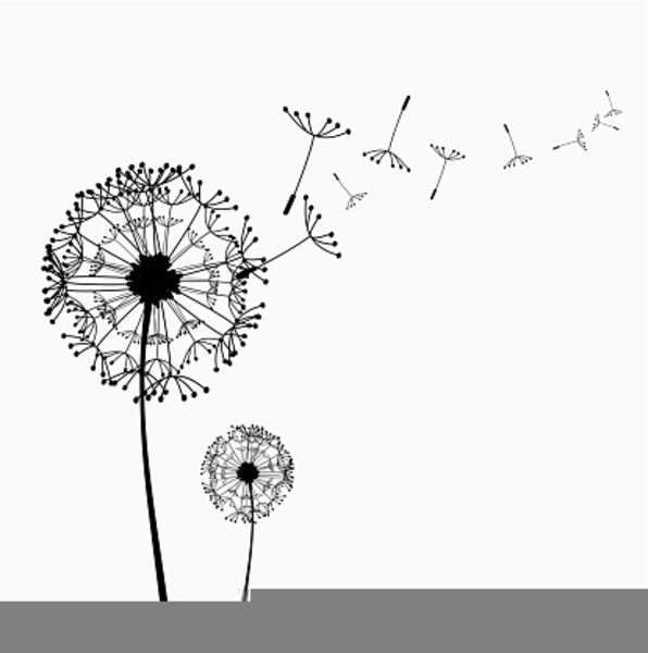free clipart dandelion flower free images at clker com vector rh clker com dandelion clipart black and white dandelion clip art free