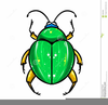 Animated Bugs Clipart Image