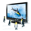 3d Penguins Icon Image