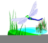 Dragonflies Clipart Image