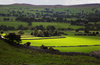 Yorkshire Dales Countryside Nyof Image