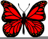 Free Animated Clipart Butterfly Image