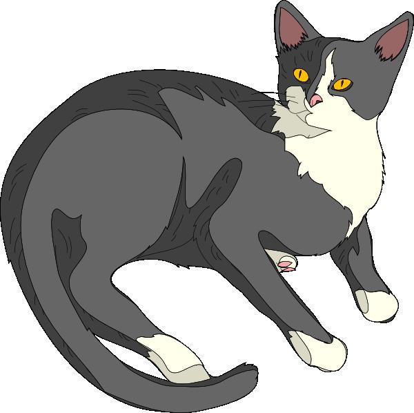julian s cat clip art at clker com vector clip art online royalty rh clker com free cat clip art outline free cat clip art photos