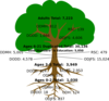 Dodd Tree Clip Art