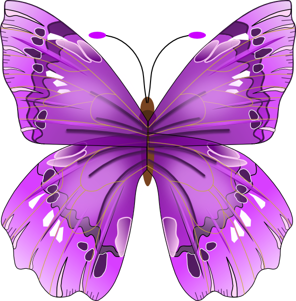 cliparts of butterfly - photo #14