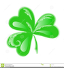 Three Leaf Clover Clipart Image
