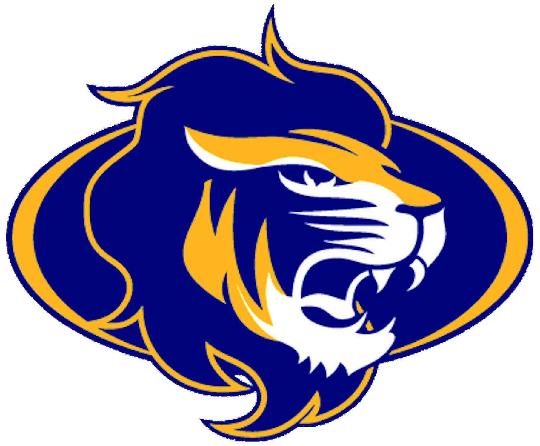 Orange Lion Logos - klejonka