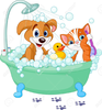 Dog Cat Bath Clipart Image