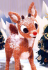 Rudolph Red Nosed Reindeer Image