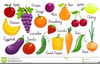 Onion Clipart For Kids Image