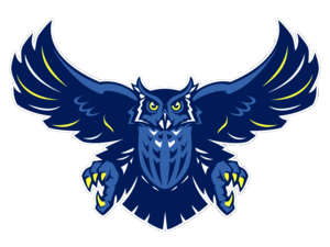 Blue Owls Cut Image