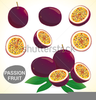 Clipart Bowl Of Fruit Image