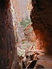 Echo Canyon Zion Image