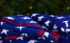 Ceremony For Disposing Of Tattered Or Worn Out Flags Image