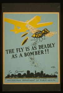 The Fly Is As Deadly As A Bomber!! Image