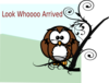 Owl On Branch 2 Clip Art
