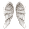 Angel Wings Image
