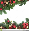 Holly And Ivy Clipart Image