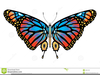 Free Butterflies Clipart Images Image