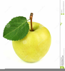 Yellow Apple Clipart Image