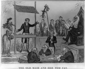 The Old Maid And Her Tom Cat  / [g. Cruikshank]. Image