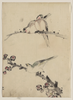 [three Birds Perched On Branches, One With Blossoms] Image