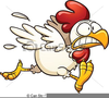 Free Cartoon Chicken Clipart Image