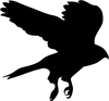 Soaring Hawks Clipart Image